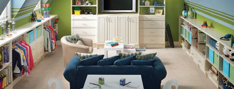 Family Room Organization Solutions